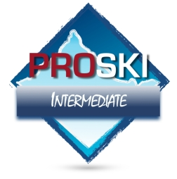 Pro Ski - Intermediate Level Ski Lessons